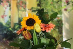 artificial flowers flowers focus