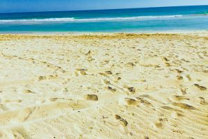 beach salalah beach salalah