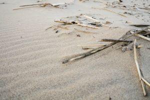 beach sand stick