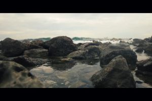 beach stones sea water rocks ocean nature shore waves