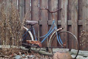 bicycle garden rustic
