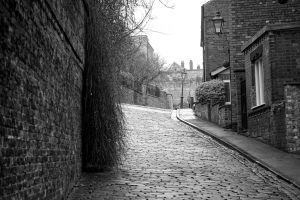 black and white bricks trees windows brick paving daytime plants lamp architecture buildings