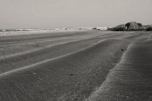 black and white solitude pexels nikon outdoor ocean no person beach seashore