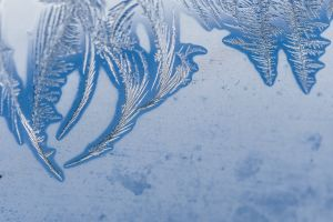 blue ice frost macro winter cold
