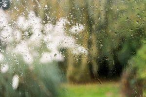 blur green downpour raindrops rain wet