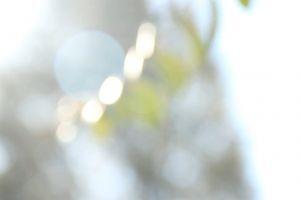 blur windy daytime