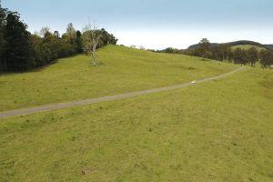 car grass vehicle aerial shot road trees hill