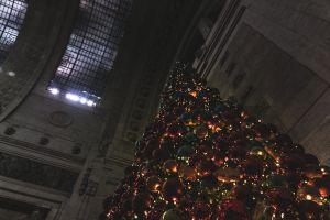 christmas decoration street milan christmas tree night streetphotography christmas