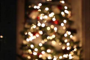 christmas lights christmas tree xmas blur holiday