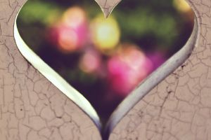 close-up design blurred background heart shape