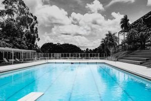 clouds palm trees sky water resort modern swimming pool trees benches poolside