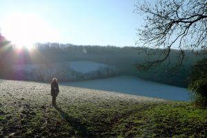 cold frost sunburst sky fields