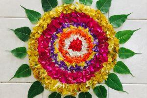 colourful art colorful tiles flatlay petals flora