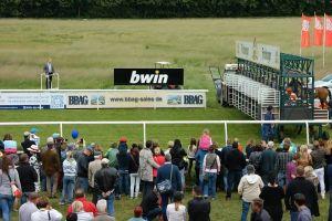 crowd equestrian race jockeys people animals horse racing racing audience