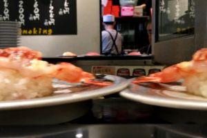 cuisine maki coveyor food japanese delicious restaurant machine plate sushi