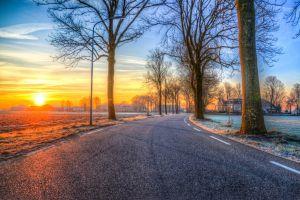 dawn asphalt lane sun sky trees road