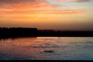 dawn ripple nature sunset water evening
