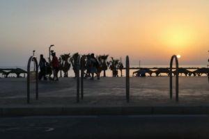 dawn sunset people walking sunrise