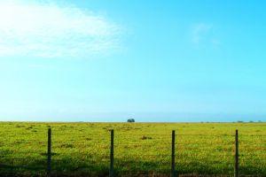 daylight green sky cropland field fence cloud farm landscape environment