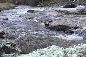daylight water stream rocks flowing