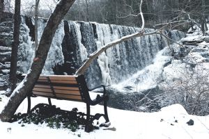 environment freezing trees icy cool waterfalls season snowy woods frozen