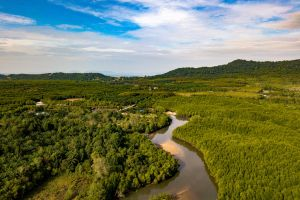 exotic wow krabi drone cam hd wallpaper nature photography forest free wallpaper sky thailand