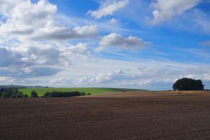 field sky clouds