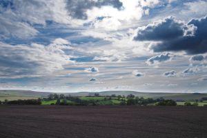 field trees clouds sky