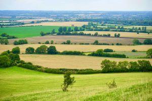 fields distance trees green landscape