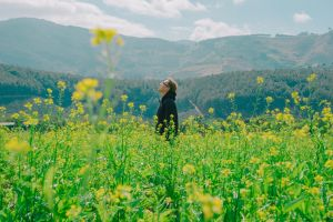 flora flowers scenic summer scene landscape person yellow environment growth