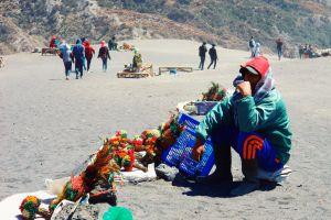 flower sand bromo indonesia destination people hard job worker