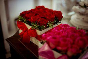 flowers roses beautiful flowers