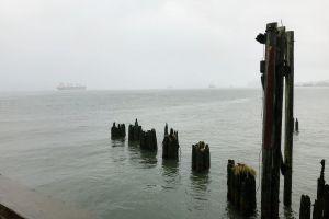 fog ocean boat