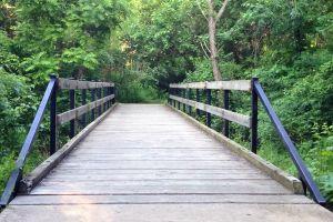 footbridge bridge littlecloudcinema
