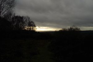 forest cloud ashdown forest