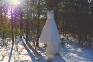 forestry beautiful wedding wedding dress wedding gown