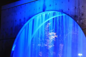 fountain water night hotel lights attraction blue