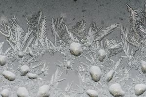 frost cold ice macro winter
