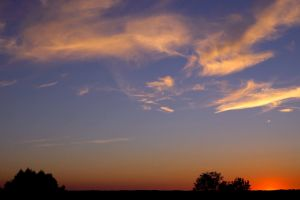 golden hour sky evening trees nature night dawn clouds sunset