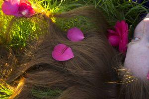grass pink flowers redhead