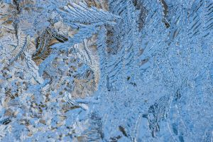 ice frost cold macro winter