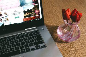 indoors internet technology wireless desk vase wood petals tulips electronics