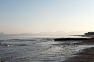 inonesia picture kupang beach tourism