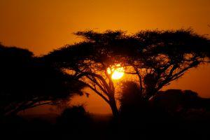 landscape adventure wanderlust wildlife photography africa outdoor sky