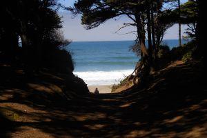 landscape coast ocean beach