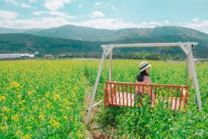 landscape mountains growth flowers woman person clouds field farm swinging