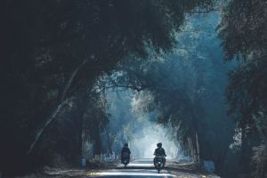 landscape riding nature daylight motorcycles road transportation system people trees