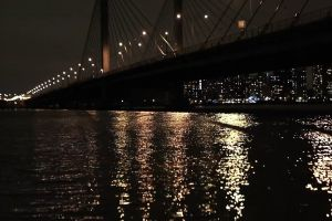 lights night city bridge water reflection