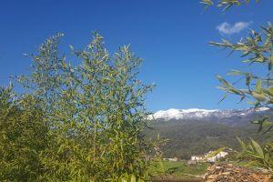mobilechallenge blue sky snow capped mountain mountain