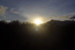 mother nature golden sun natue sunset